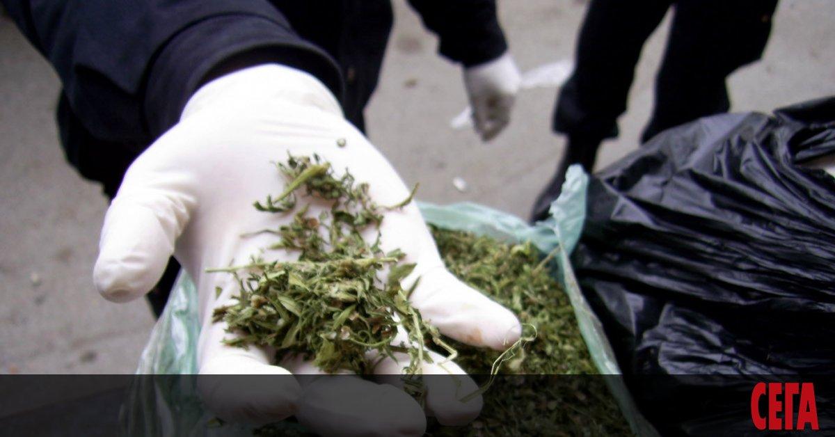 Разбиха нарколаборатория при спецакция в Горна Оряховица. Тя се намира