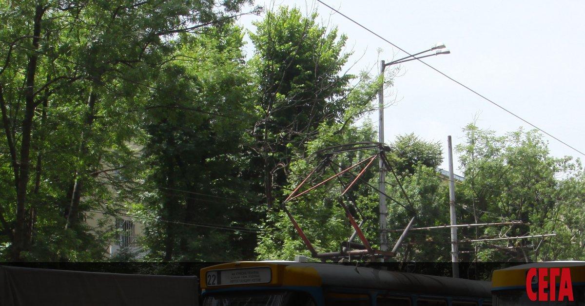 Снимка: София заменя над 30-годишни трамваи с 19-годишни