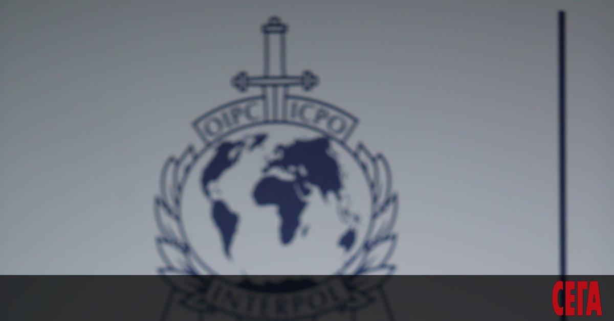 Интерпол предупреди за организиранипрестъпни мрежи, които могат да започнат продажба