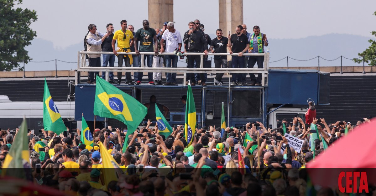 Изследователи от университета в Сао Пауло са открили нов вариант