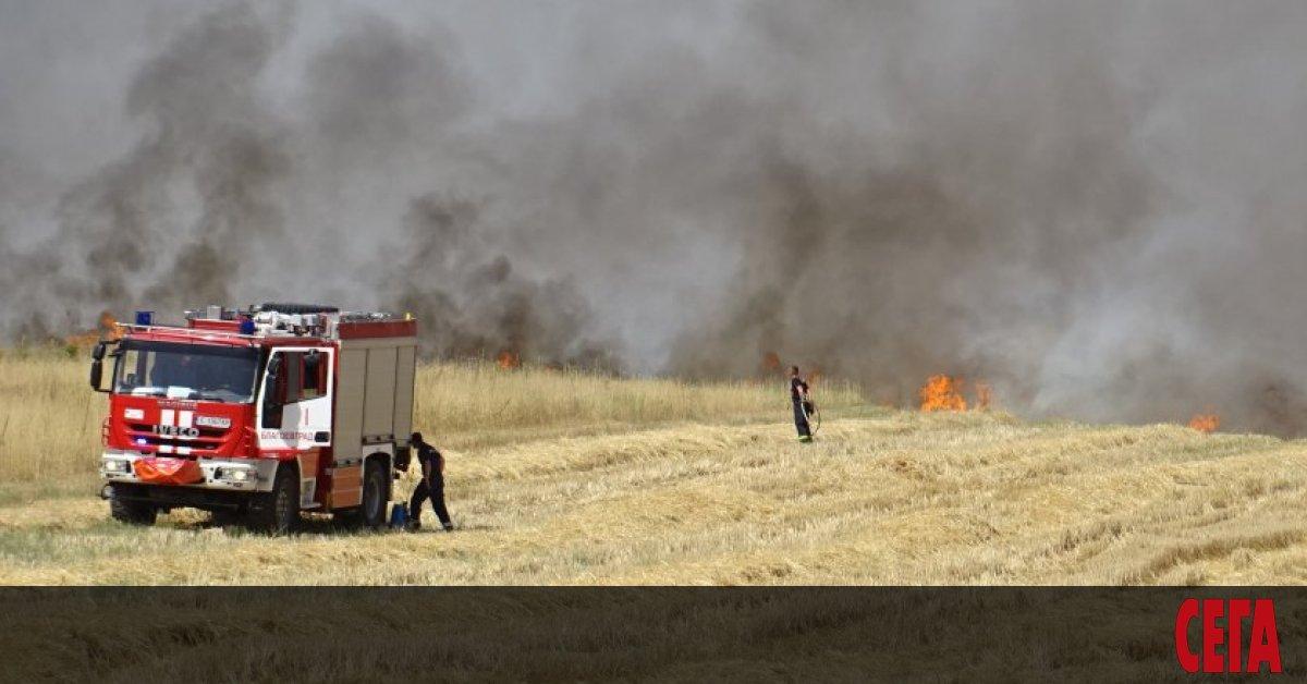 Група служители на Югозападно държавно предприятие са погълнати от пожара