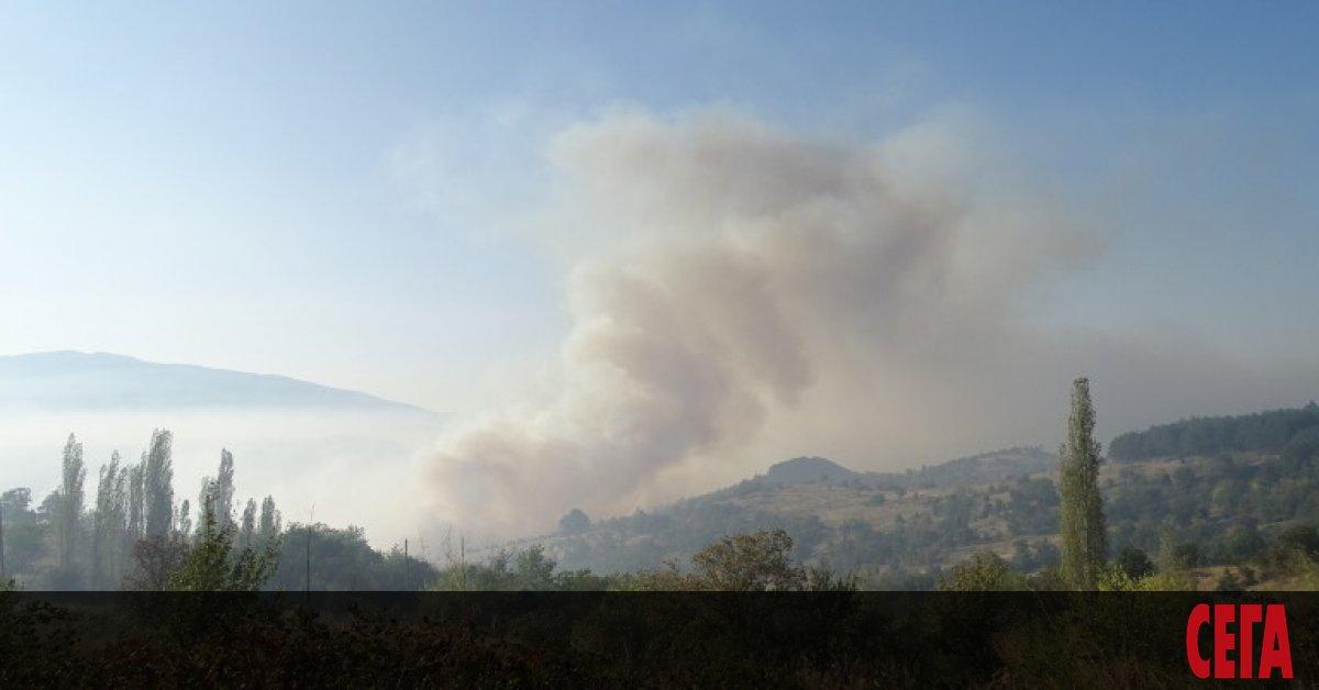 Голямпожар избухна над Водната кула в Карлово. Пламъците са обхванали
